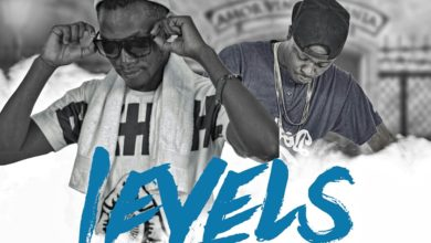 Photo of Hush Ft Alpha Romeo – Levels – (Prod. By Ricore)