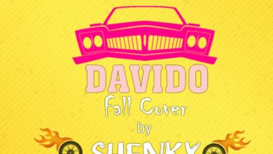 Photo of Shenky Shugah – Fall (Davido Cover)