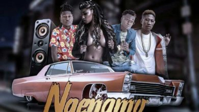 Photo of Dope Boyz Ft. Jae Cash – Ngenamo