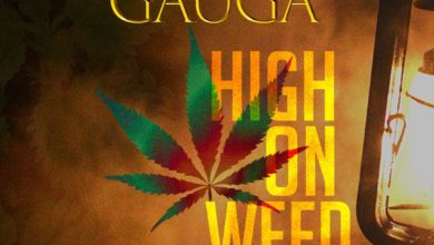 Photo of Gauga – High On Weed (Mixtape)