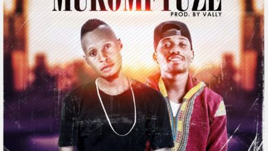 Photo of Vally Vally Ft. Drimz – Mukomfyuze