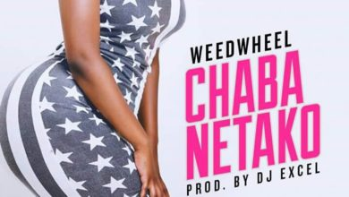Photo of WeedWheel – Chaba Netako (Prod. By DJ Excel)