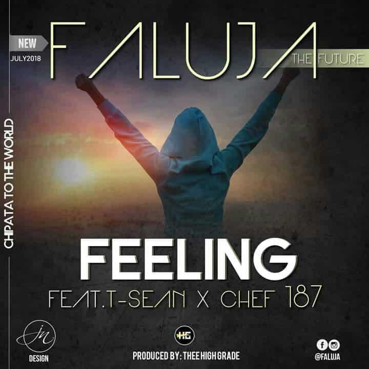 Faluja Ft. T Sean Chef 187 Feeling