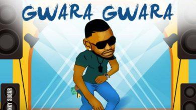 Photo of Hamoba Ft. Vocal Boy – Gwara Gwara