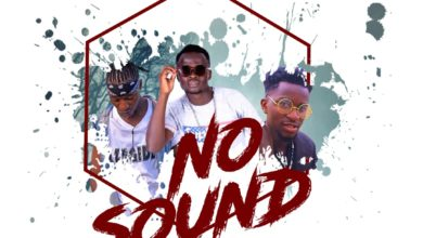 Photo of Ray Dee Mass Ft. Dove Dee & Bizzo – No Sound