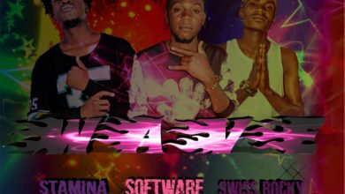 Software Ft Stamina Boy X swiss Rocky Wave