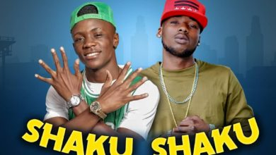 Photo of Picasso Ft. Ray Dee (408 Empire) – Shaku Shaku 4 Me