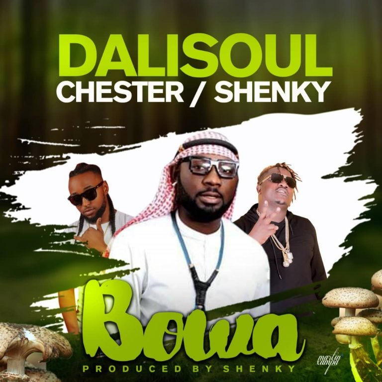 Dalisoul Ft. Chester Shenky Bowa