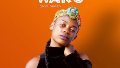 Photo of Shona – Wako (Prod. By Mixtizo)