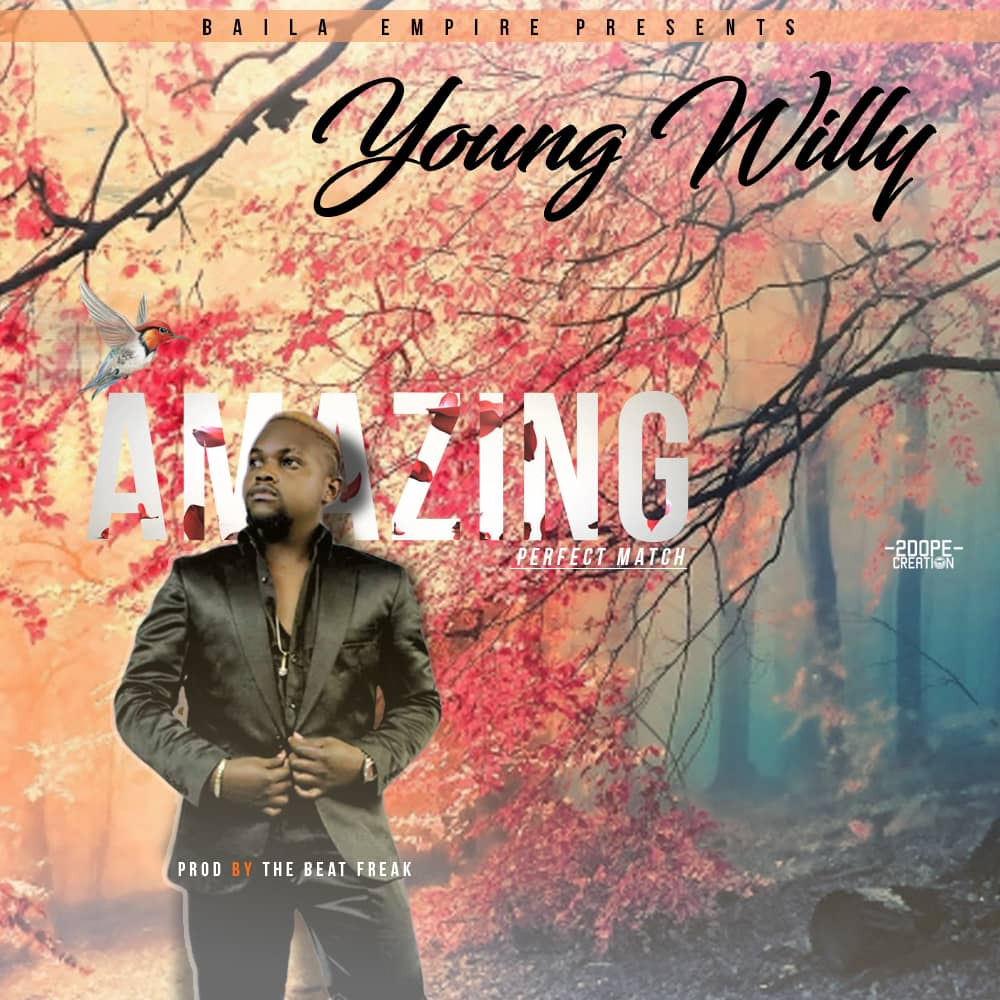 Young Willy Amazing