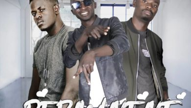 Photo of PK M'zizi & Smart Bee Ft. Drifta Trek – Permanent (Prod. By Dre)