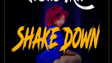 Photo of Treko Mil – Shake Down (Prod. By Zecho)