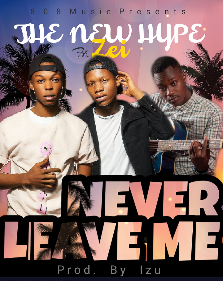 The New Hype Ft. Zei Never Leave Me