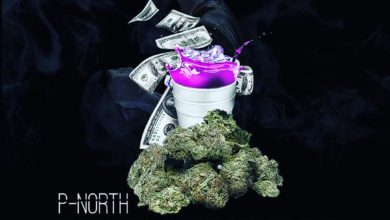 Photo of P-North – Your Highness (Prod. Drugz World Wide)
