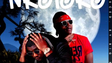 Photo of Stevo Ft. Willz – Nkoloko