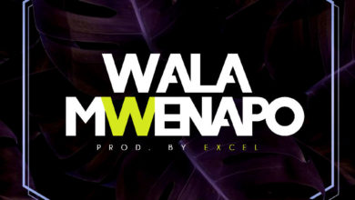 Photo of Stonez – Wala Mwenapo (Prod. By Excel)