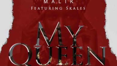 Photo of Mohsin Malik X Skales – My Queen