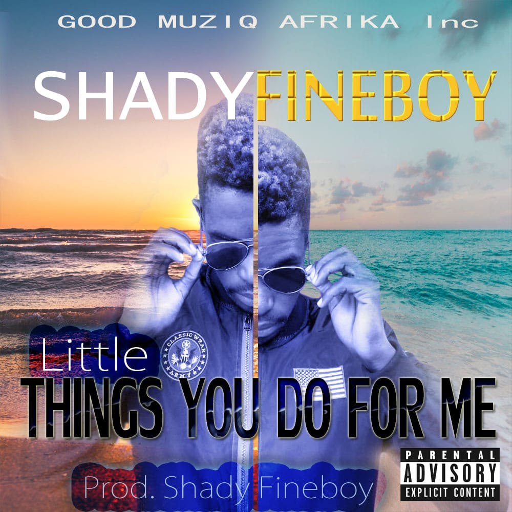 Shady Fineboy - Little Things You Do For Me
