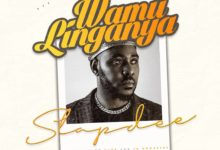 Photo of Slapdee – Wamulinganya