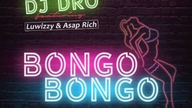Photo of DJ Dro Ft. Luwizzy & Asap Rich – Bongo Bongo