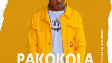 Photo of Dizmo – Pakokola (Prod. By Trurx 808)