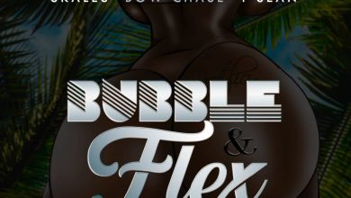 Mohsin Malik, Bow Chase, T Sean & Skales - Bubble & Flex