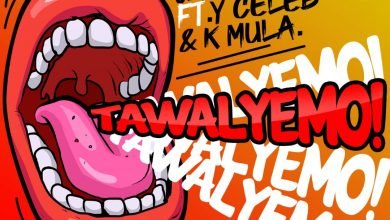 Photo of Jae Cash Ft. Y Celeb & K Mulla – Tawa Lyemo, Like W.T.F