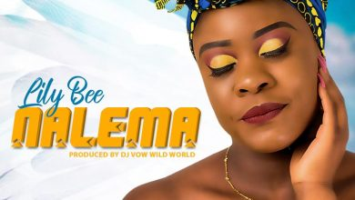 Photo of Lily – Nalema (Prod. By DJ Vow Wild World)